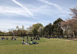 しあわせの村〜緑の広場〜