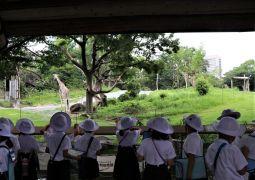 動物園見学