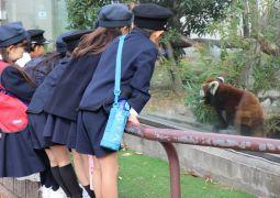 動物園たんけん